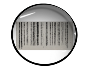 GS1-128 Shipping Label Glossary